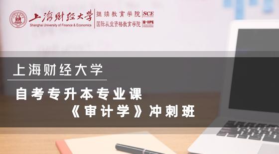 上海財經大學自考專升本《審計學》沖刺課