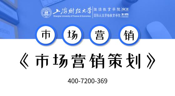 上海財經大學自考市場營銷專業課《市場營銷策劃》